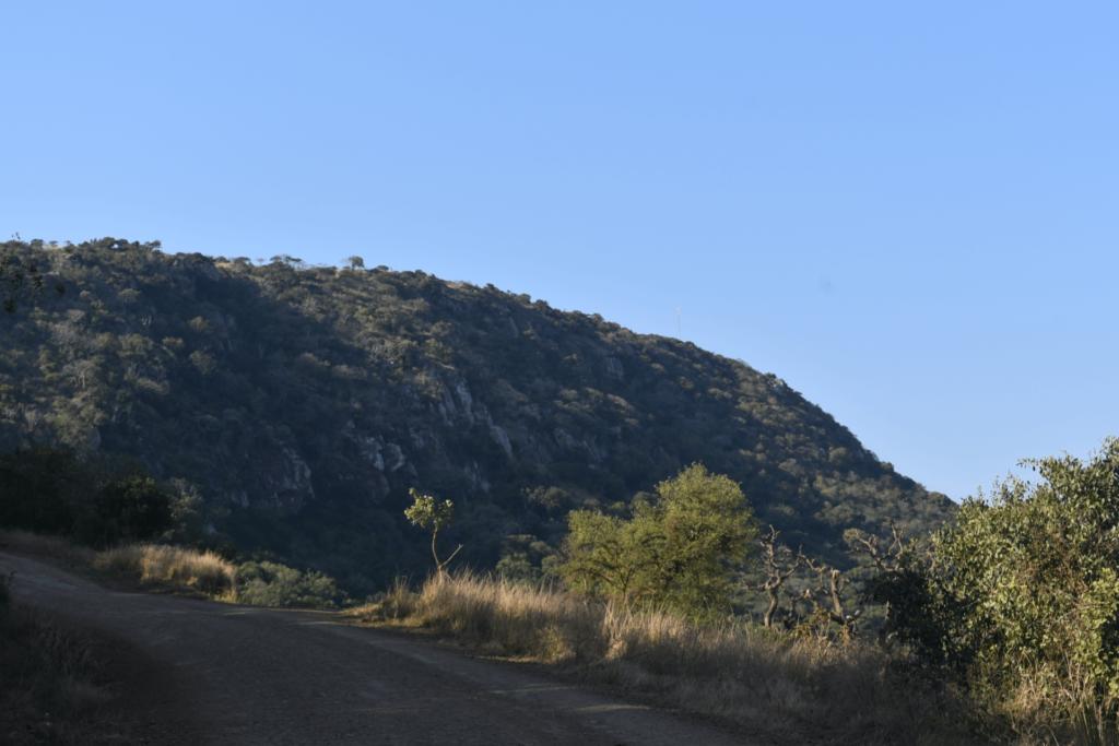 KZNTR Zululand Experience - Image (3) Resize